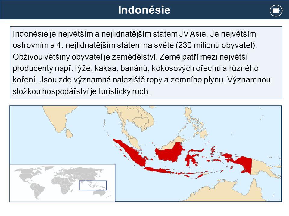 Indonésie Indonésie je největším a nejlidnatějším státem JV Asie. Je největším ostrovním a 4. nejlidnatějším státem na světě (230 milionů obyvatel). O