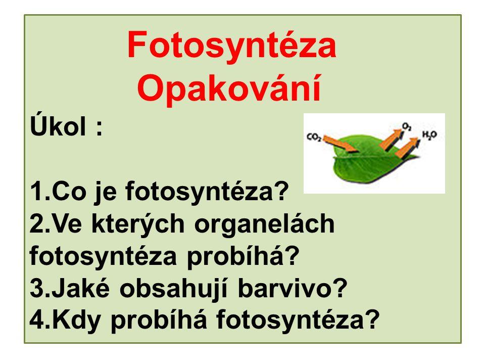 Fotosyntéza Opakování Úkol : 1.Co je fotosyntéza.2.Ve kterých organelách fotosyntéza probíhá.