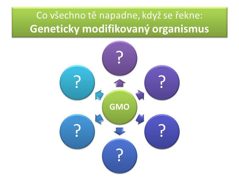 Co všechno tě napadne, když se řekne: Geneticky modifikovaný organismus GMO ??????