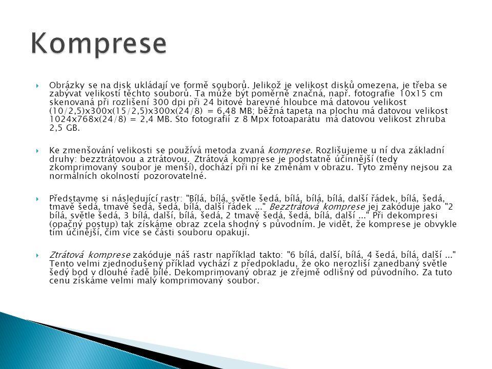 BMP  Microsoft Windows BitMaP  Asi jediný program, který tyto soubory standardně využívá je Kreslení ve Windows  Jednoduchý formát.