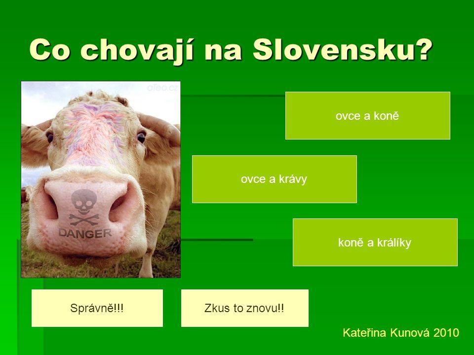 Kolik lidí žije na Slovensku? 6 milionů 5 milionů 4 milionů Správně!!!!!Zkus to znovu!! Kateřina Kunová 2010