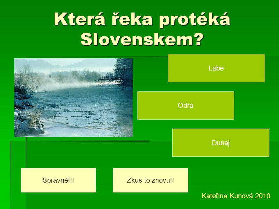 Co chovají na Slovensku? ovce a koně ovce a krávy koně a králíky Správně!!!Zkus to znovu!! Kateřina Kunová 2010