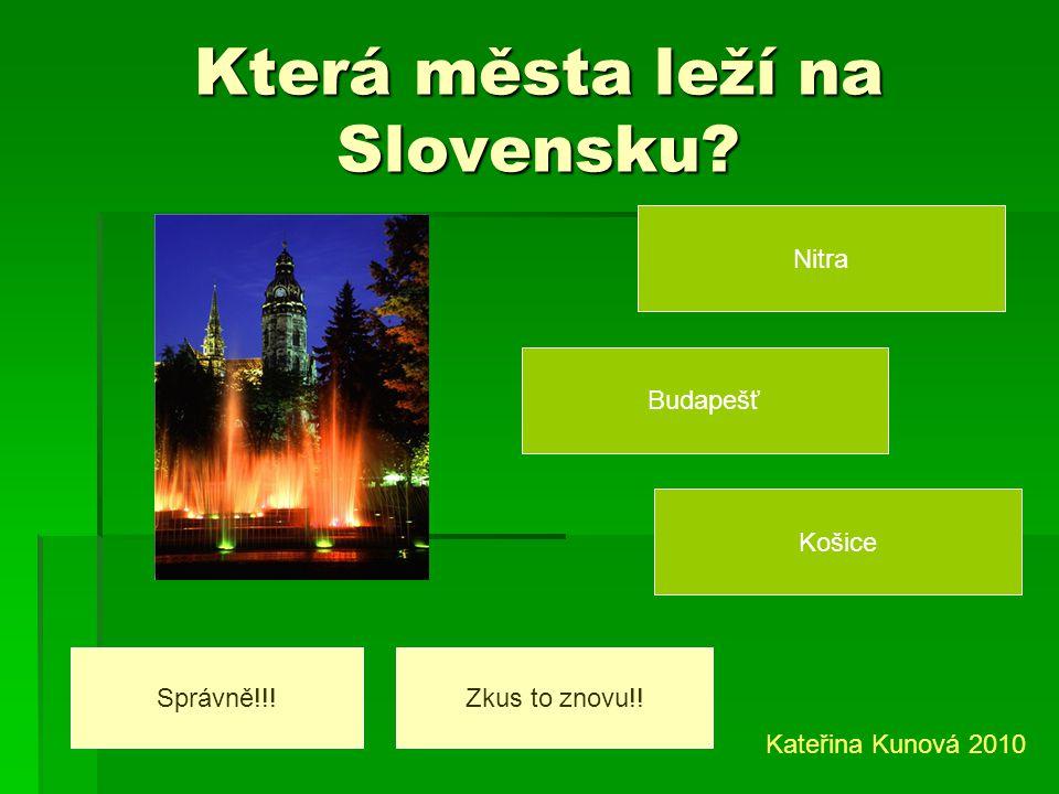 Která řeka protéká Slovenskem? Labe Odra Dunaj Správně!!!Zkus to znovu!! Kateřina Kunová 2010