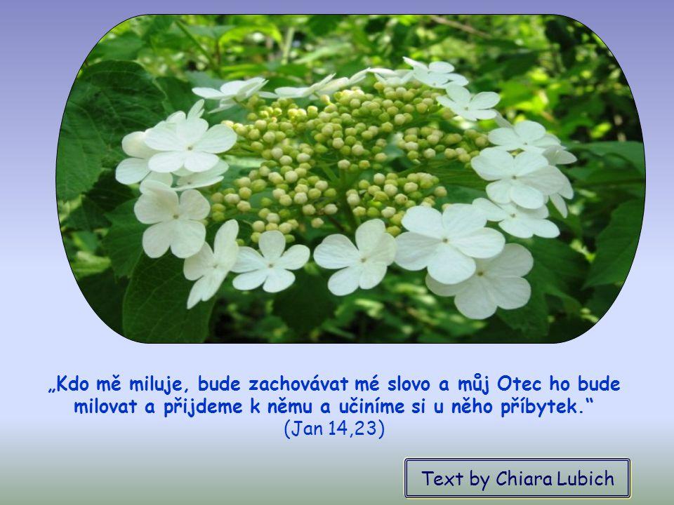 Právě díky vzájemné lásce se v jeho srdci rozvinou různé ctnosti a on bude moci odpovědět na povolání směřující k jeho posvěcení.