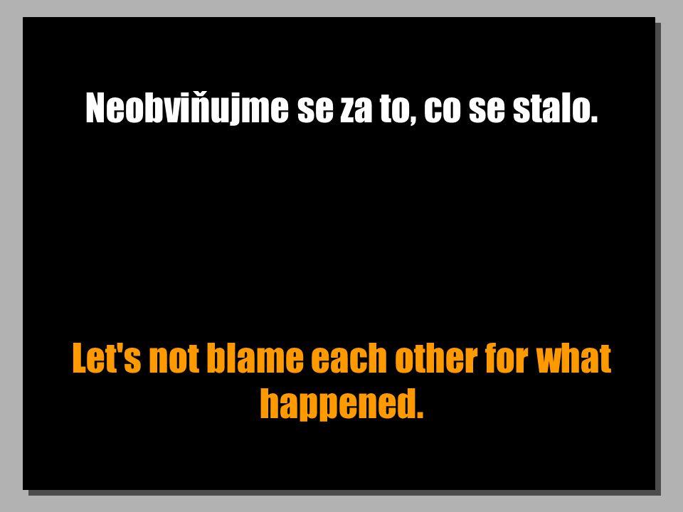 Neobviňujme se za to, co se stalo. Let's not blame each other for what happened.