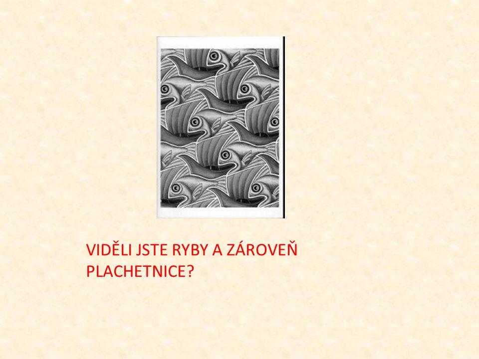 VIDĚLI JSTE RYBY A ZÁROVEŇ PLACHETNICE?