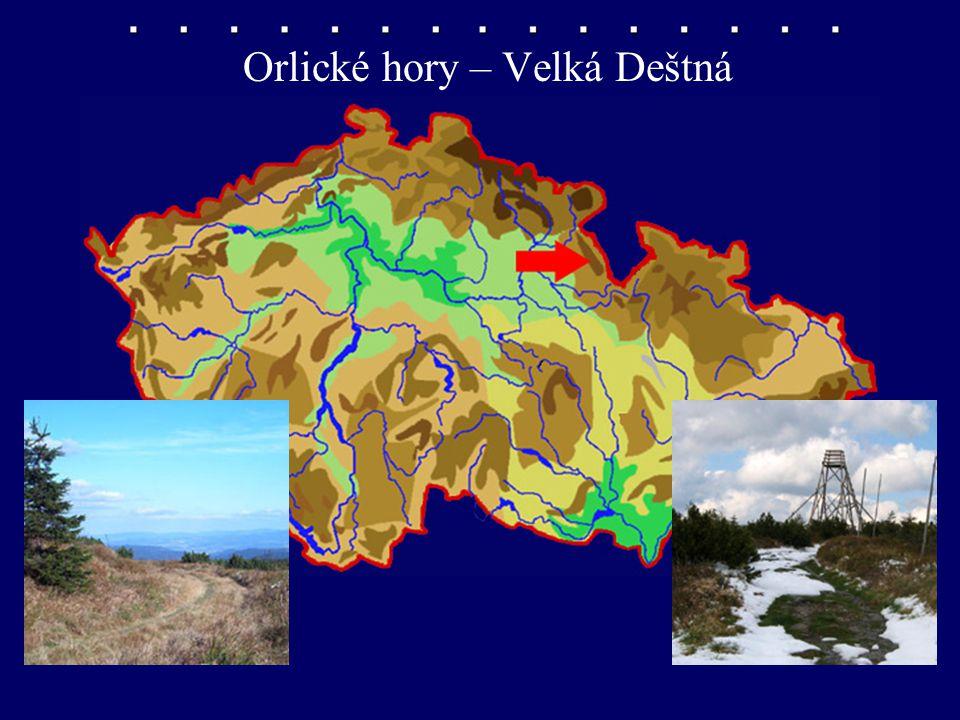 Orlické hory – Velká Deštná