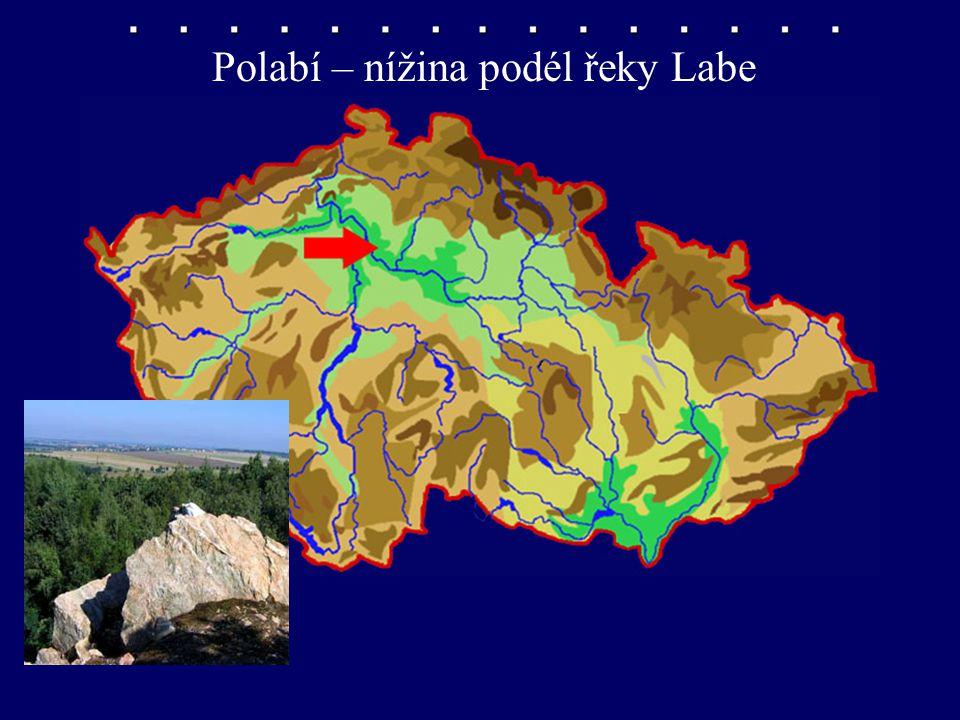 Polabí – nížina podél řeky Labe