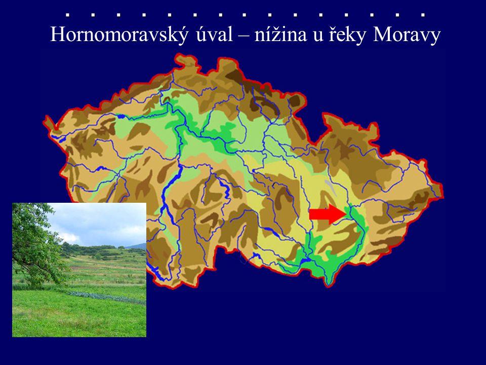 Hornomoravský úval – nížina u řeky Moravy