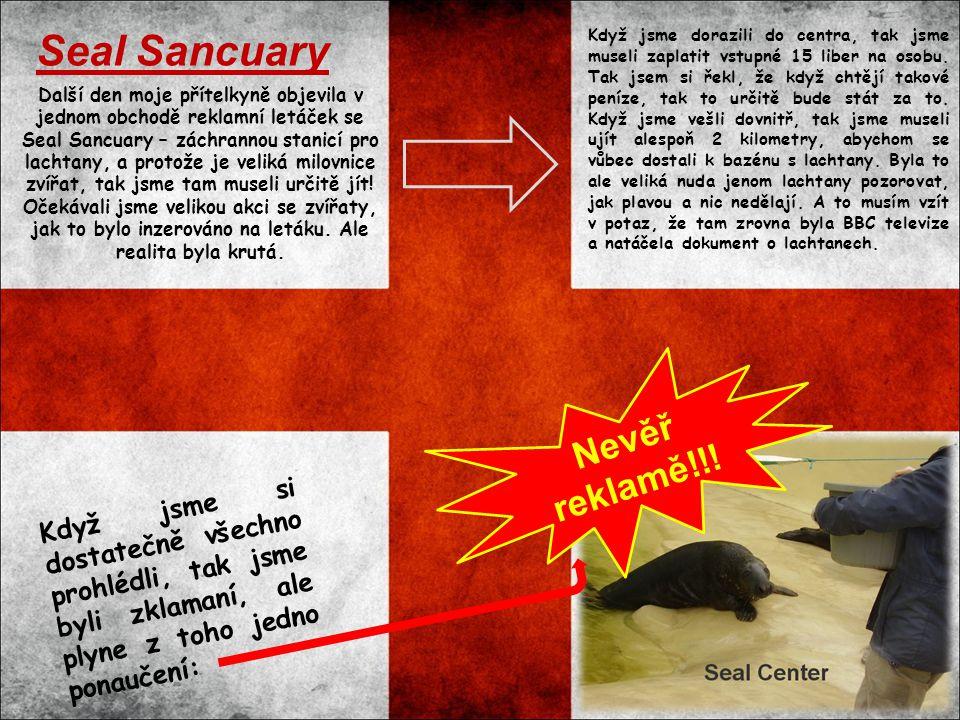 Další den moje přítelkyně objevila v jednom obchodě reklamní letáček se Seal Sancuary – záchrannou stanicí pro lachtany, a protože je veliká milovnice