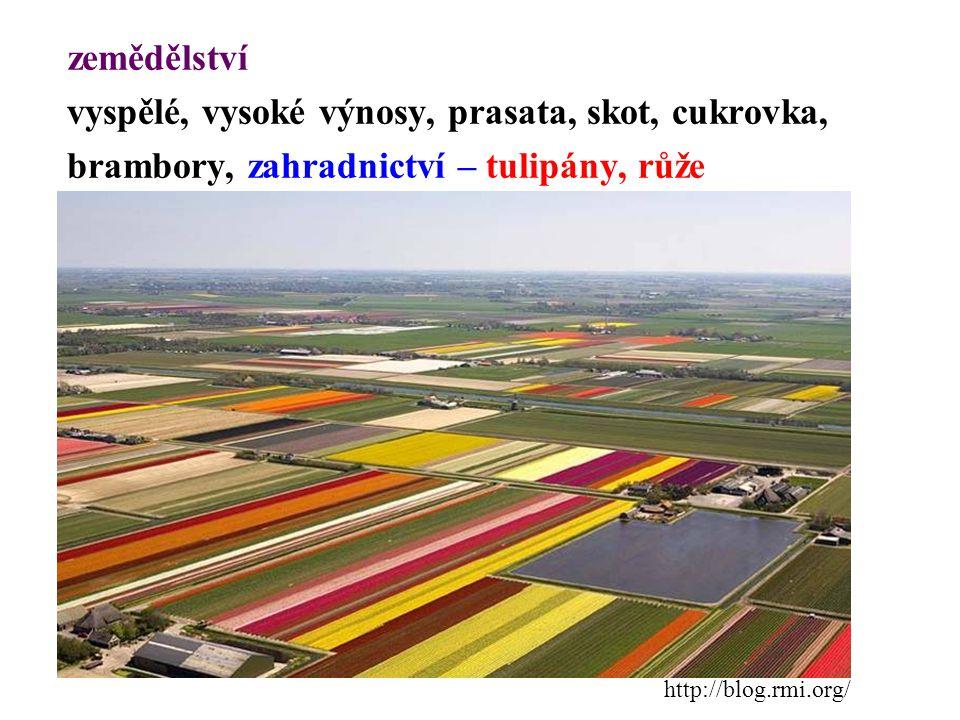 zemědělství vyspělé, vysoké výnosy, prasata, skot, cukrovka, brambory, zahradnictví – tulipány, růže http://blog.rmi.org/