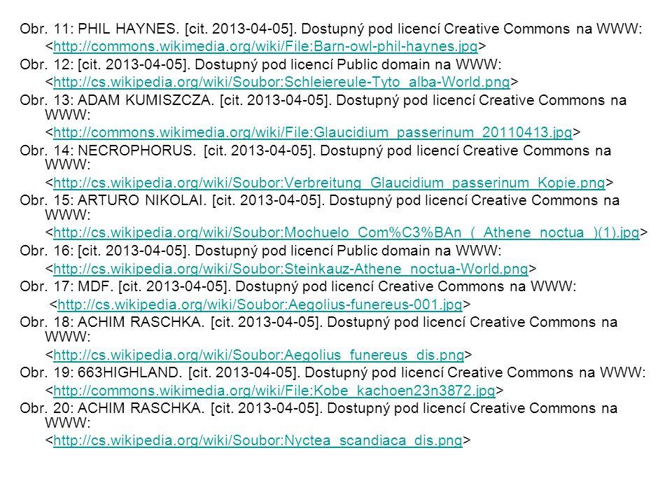 Obr. 11: PHIL HAYNES. [cit. 2013-04-05]. Dostupný pod licencí Creative Commons na WWW: http://commons.wikimedia.org/wiki/File:Barn-owl-phil-haynes.jpg