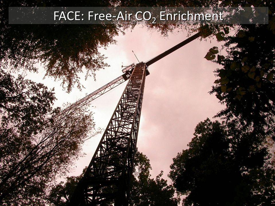 FACE: Free-Air CO 2 Enrichment