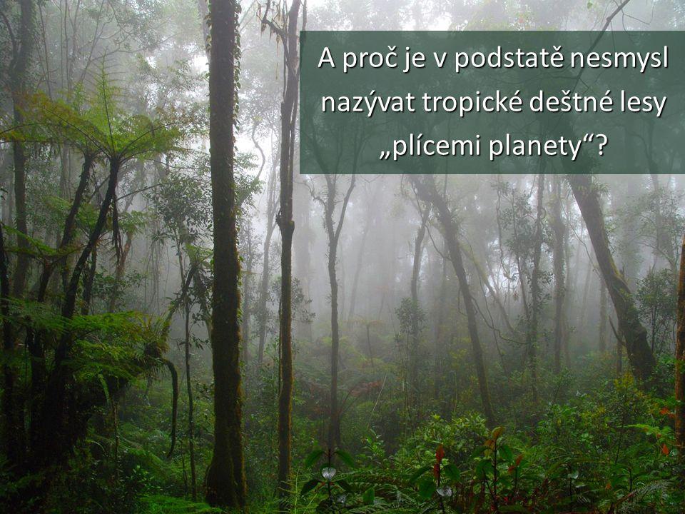 """A proč je v podstatě nesmysl nazývat tropické deštné lesy """"plícemi planety""""?"""