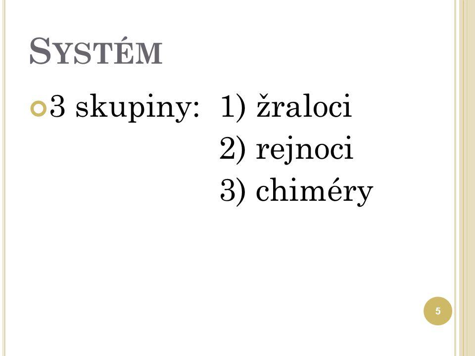 S YSTÉM 3 skupiny:1) žraloci 2) rejnoci 3) chiméry 5