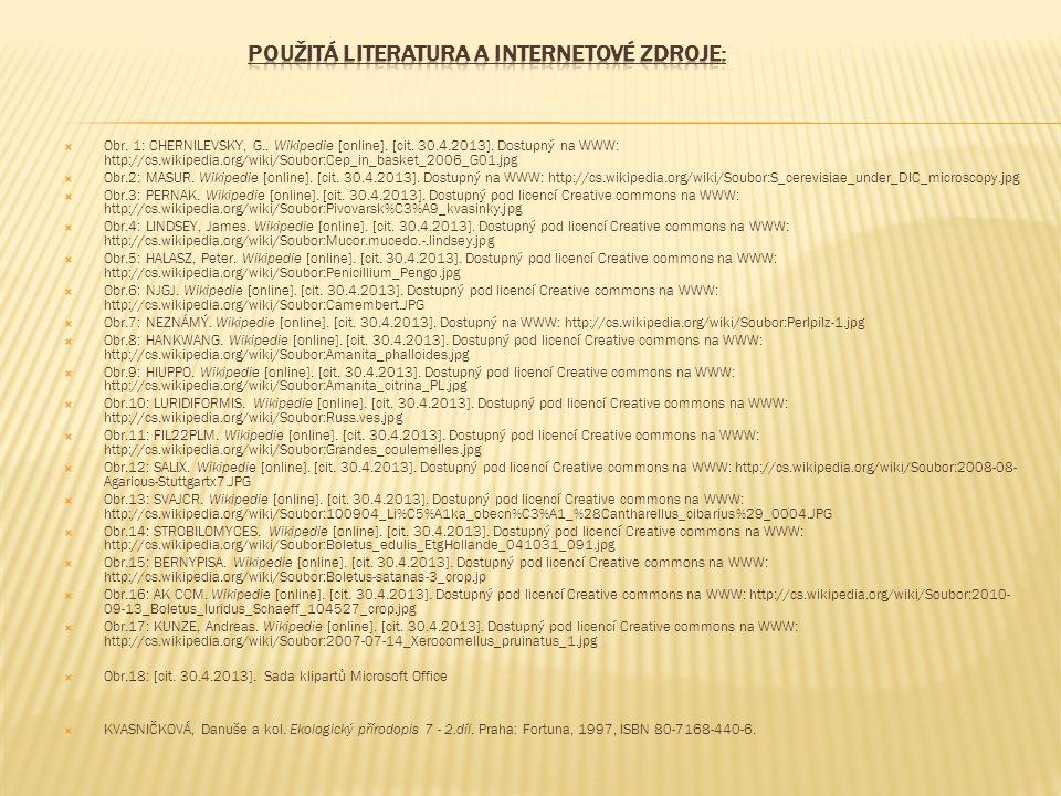  Obr. 1: CHERNILEVSKY, G.. Wikipedie [online]. [cit. 30.4.2013]. Dostupný na WWW: http://cs.wikipedia.org/wiki/Soubor:Cep_in_basket_2006_G01.jpg  Ob