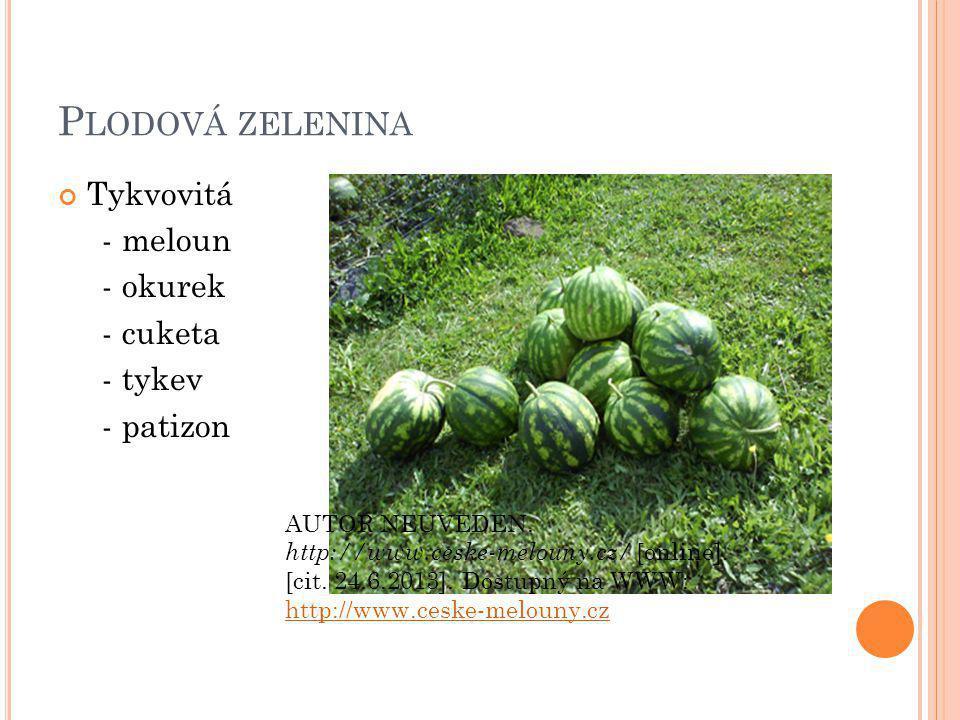 P LODOVÁ ZELENINA Tykvovitá - meloun - okurek - cuketa - tykev - patizon AUTOR NEUVEDEN.