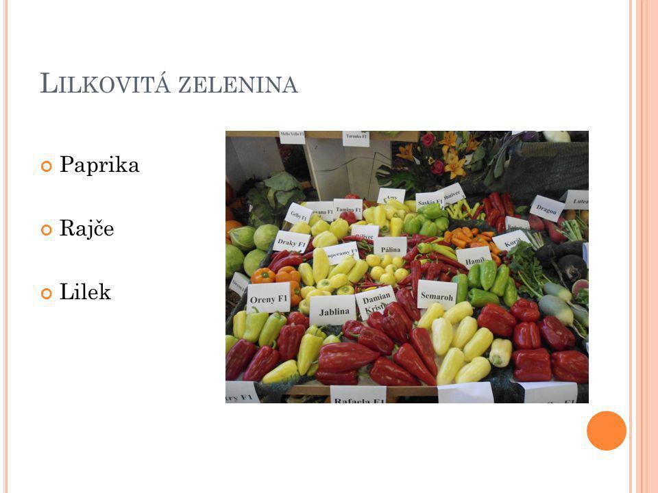 L ILKOVITÁ ZELENINA Paprika Rajče Lilek