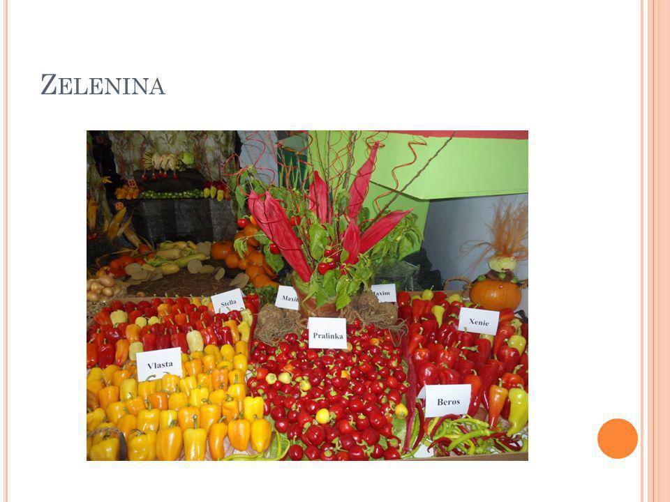 C HARAKTERISTIKA Jako zelenina je označován celý soubor různých rostlin a jejich částí, které se významnou měrou uplatňují ve výživě.