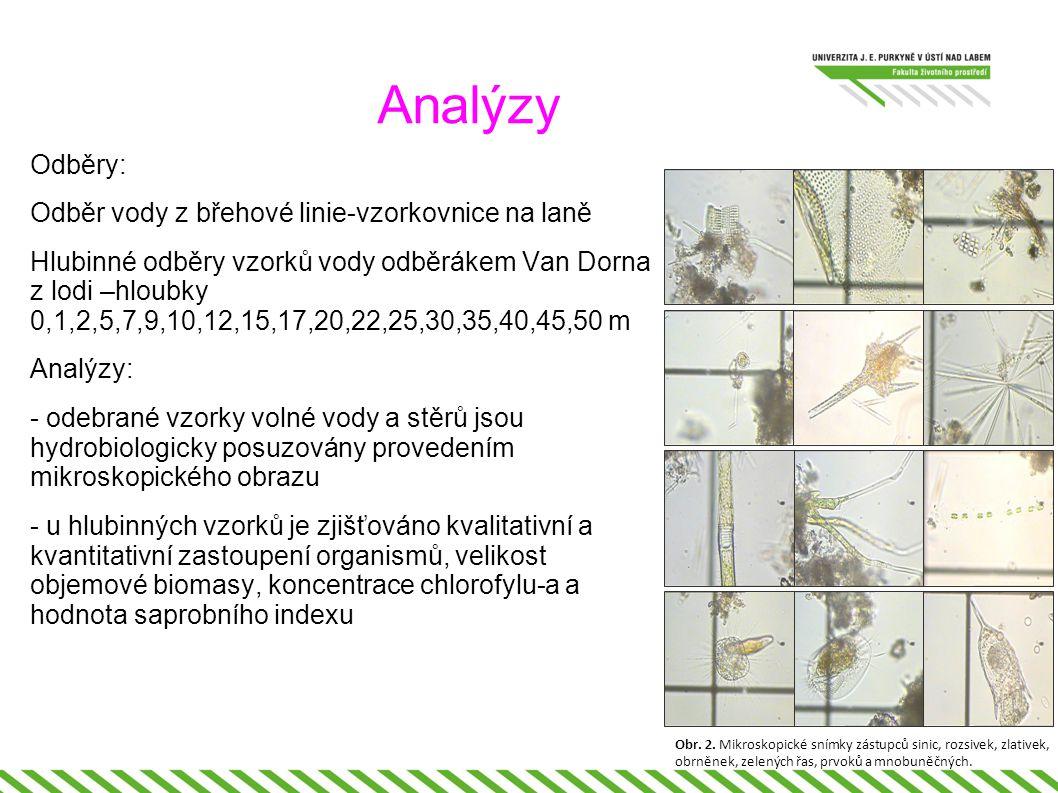 Analýzy Odběry: Odběr vody z břehové linie-vzorkovnice na laně Hlubinné odběry vzorků vody odběrákem Van Dorna z lodi –hloubky 0,1,2,5,7,9,10,12,15,17,20,22,25,30,35,40,45,50 m Analýzy: - odebrané vzorky volné vody a stěrů jsou hydrobiologicky posuzovány provedením mikroskopického obrazu - u hlubinných vzorků je zjišťováno kvalitativní a kvantitativní zastoupení organismů, velikost objemové biomasy, koncentrace chlorofylu-a a hodnota saprobního indexu Obr.