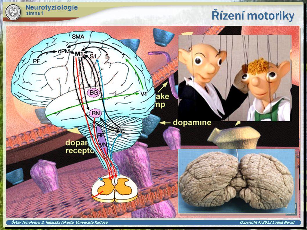Ústav fyziologie, 2. lékařská fakulta, Univerzita Karlova Copyright © 2013 Luděk Nerad Řízení motoriky Neurofyziologie strana 1