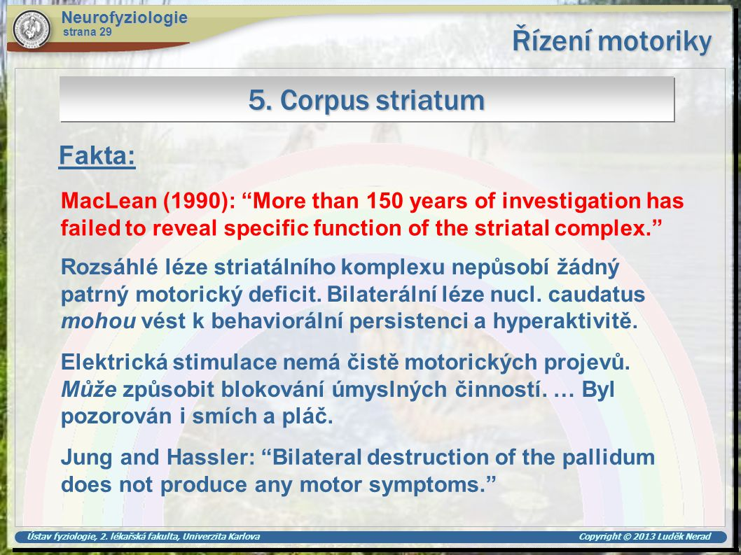 Ústav fyziologie, 2. lékařská fakulta, Univerzita Karlova Copyright © 2013 Luděk Nerad Řízení motoriky Neurofyziologie strana 29 5. Corpus striatum Ma