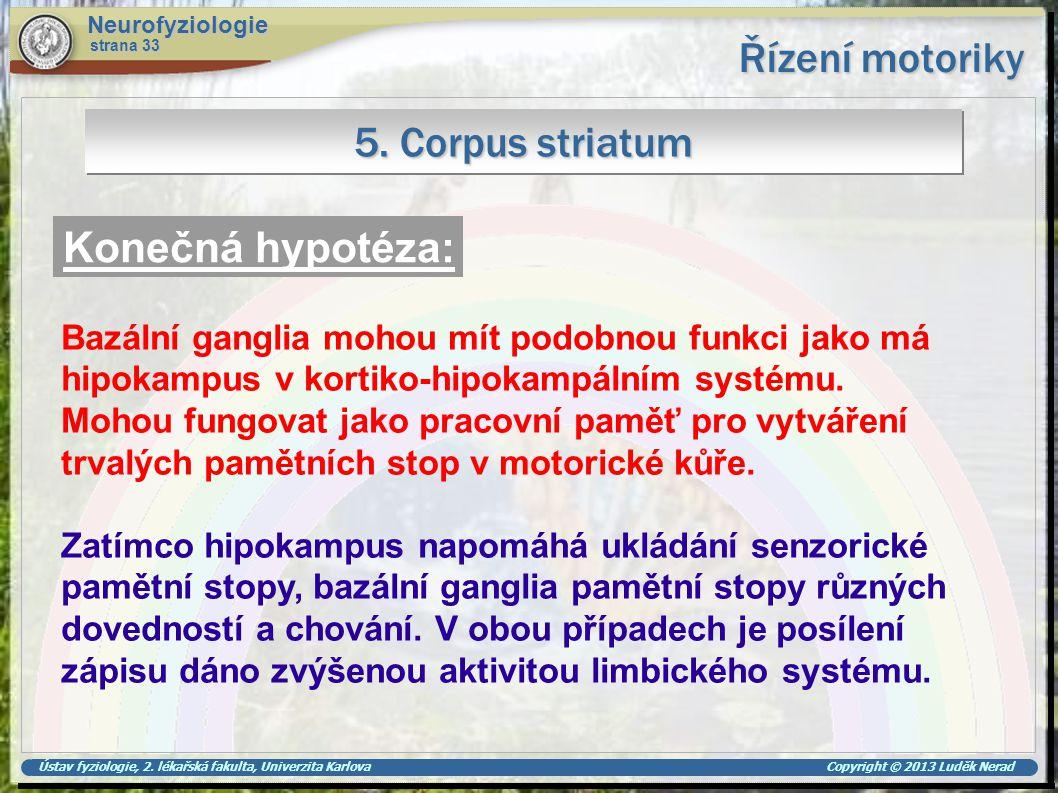Ústav fyziologie, 2. lékařská fakulta, Univerzita Karlova Copyright © 2013 Luděk Nerad Řízení motoriky Neurofyziologie strana 33 5. Corpus striatum Ko
