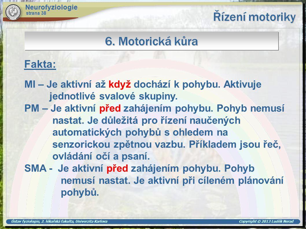 Ústav fyziologie, 2. lékařská fakulta, Univerzita Karlova Copyright © 2013 Luděk Nerad Řízení motoriky Neurofyziologie strana 38 6. Motorická kůra Fak