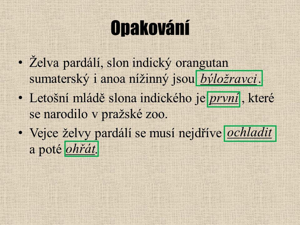 Opakování Želva pardálí, slon indický orangutan sumaterský i anoa nížinný jsou. Letošní mládě slona indického je, které se narodilo v pražské zoo. Vej