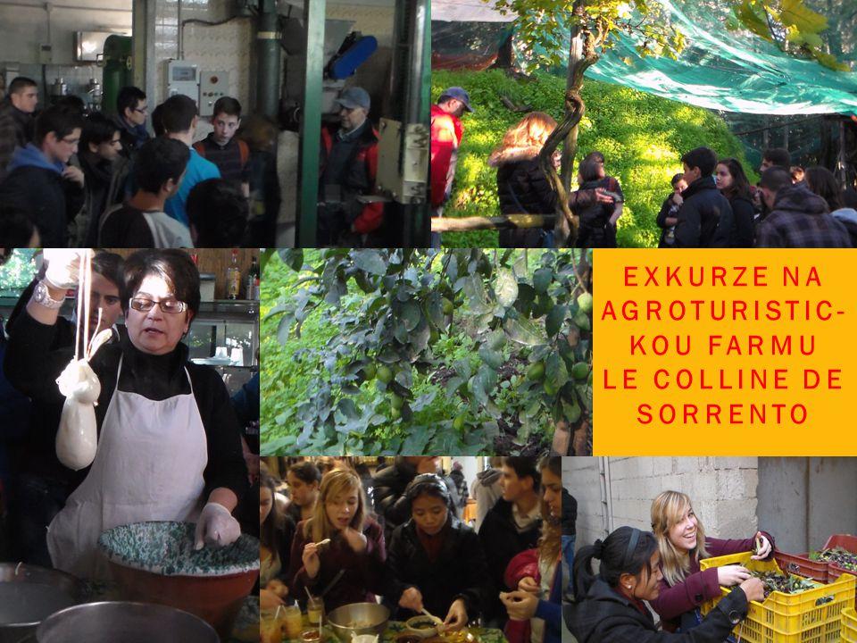 EXKURZE NA AGROTURISTIC- KOU FARMU LE COLLINE DE SORRENTO