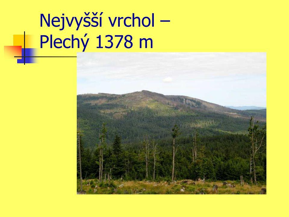 Nejvyšší vrchol – Plechý 1378 m