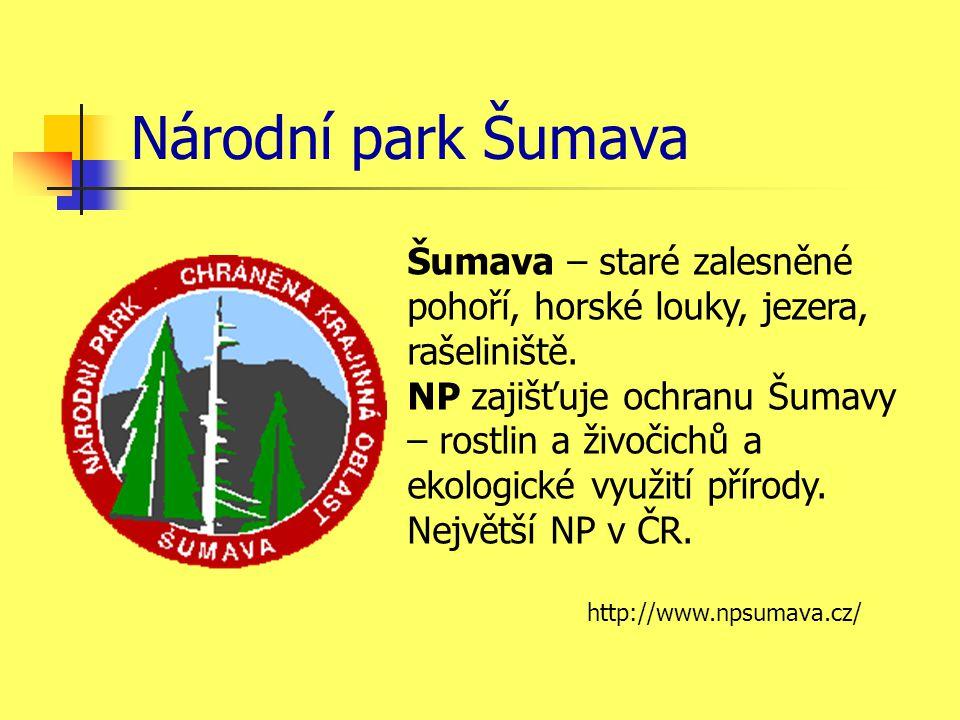 Národní park Šumava Šumava – staré zalesněné pohoří, horské louky, jezera, rašeliniště. NP zajišťuje ochranu Šumavy – rostlin a živočichů a ekologické