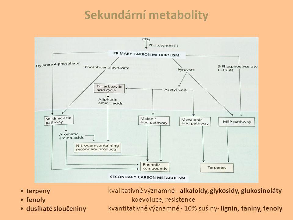 Sekundární metabolity terpeny fenoly dusíkaté sloučeniny kvalitativně významné - alkaloidy, glykosidy, glukosinoláty koevoluce, resistence kvantitativ