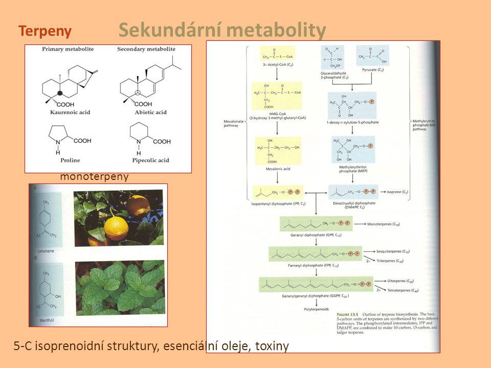 Sekundární metabolity Terpeny 5-C isoprenoidní struktury, esenciální oleje, toxiny monoterpeny