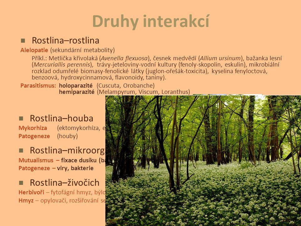 Druhy interakcí Rostlina–houba Mykorhiza(ektomykorhíza, endomykorhíza) Patogeneze(houby) Rostlina–mikroorganismus Mutualismus – fixace dusíku (bakteri