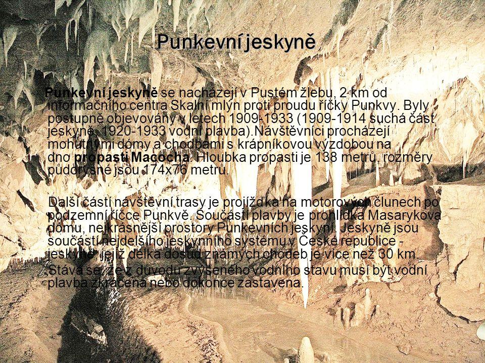 Punkevní jeskyně Punkevní jeskyně se nacházejí v Pustém žlebu, 2 km od informačního centra Skalní mlýn proti proudu říčky Punkvy.