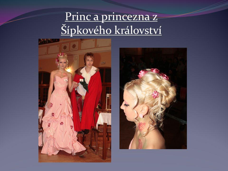 Princ a princezna z Šípkového království