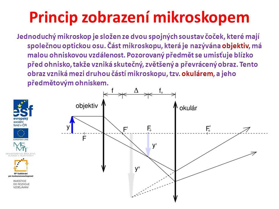 Princip zobrazení mikroskopem Jednoduchý mikroskop je složen ze dvou spojných soustav čoček, které mají společnou optickou osu. Část mikroskopu, která