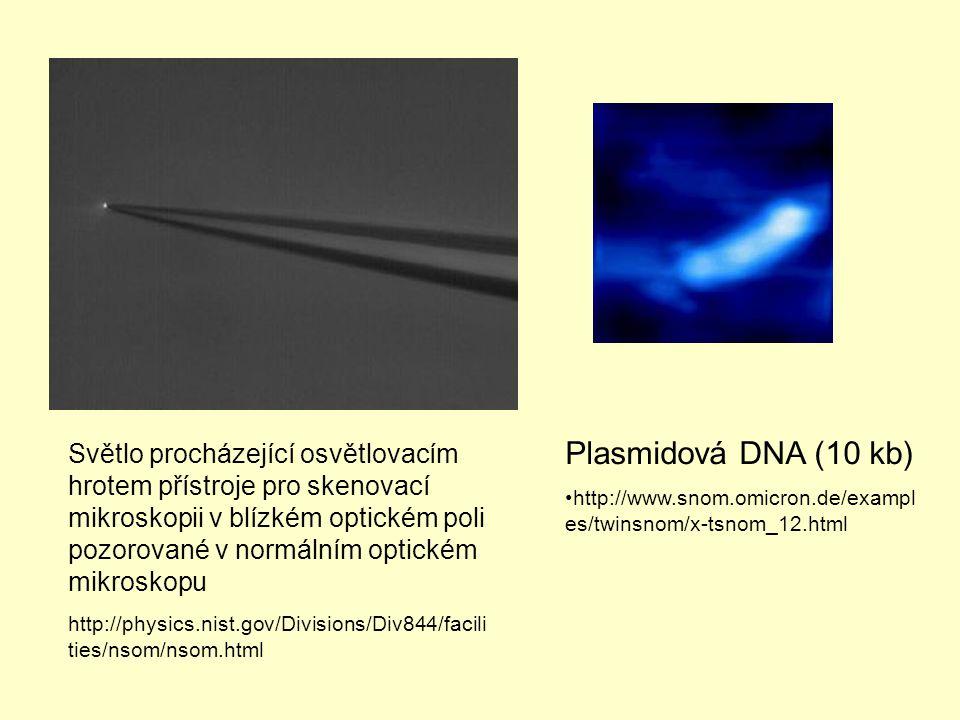 Světlo procházející osvětlovacím hrotem přístroje pro skenovací mikroskopii v blízkém optickém poli pozorované v normálním optickém mikroskopu http://physics.nist.gov/Divisions/Div844/facili ties/nsom/nsom.html Plasmidová DNA (10 kb) http://www.snom.omicron.de/exampl es/twinsnom/x-tsnom_12.html