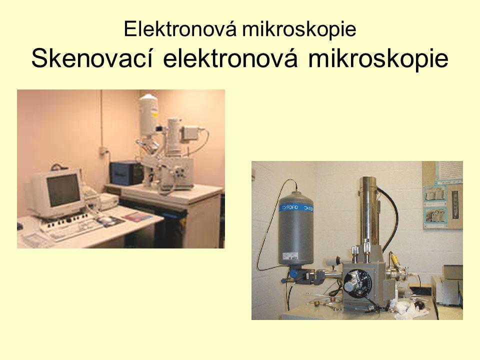 Elektronová mikroskopie Skenovací elektronová mikroskopie
