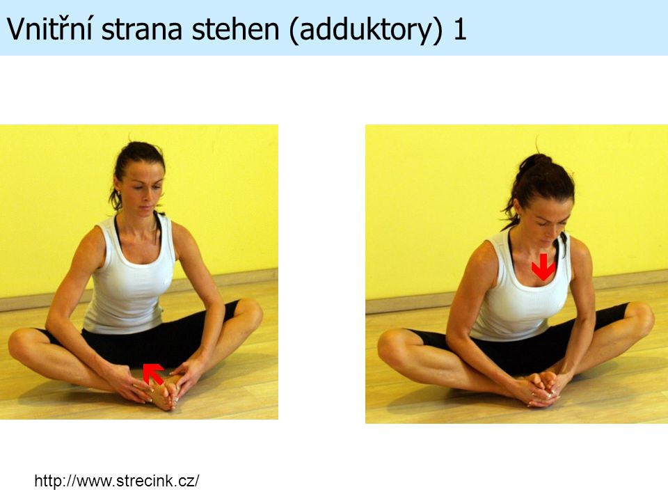 Vnitřní strana stehen (adduktory) 1 http://www.strecink.cz/