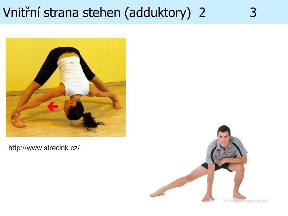 Vnitřní strana stehen (adduktory) 2 3 http://www.strecink.cz/