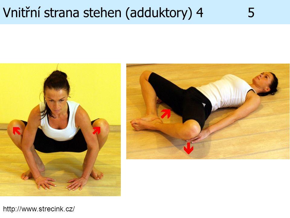 Vnitřní strana stehen (adduktory) 4 5 http://www.strecink.cz/
