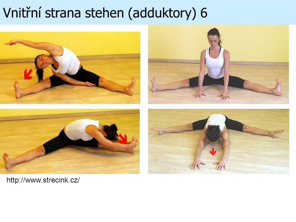Vnitřní strana stehen (adduktory) 6 http://www.strecink.cz/