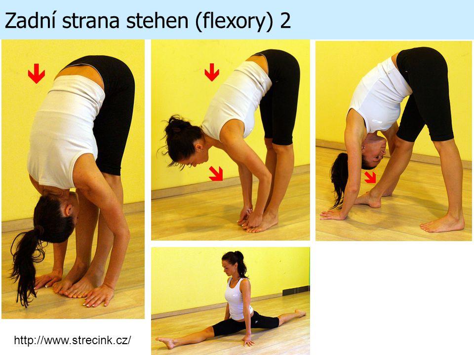 Zadní strana stehen (flexory) 2 http://www.strecink.cz/