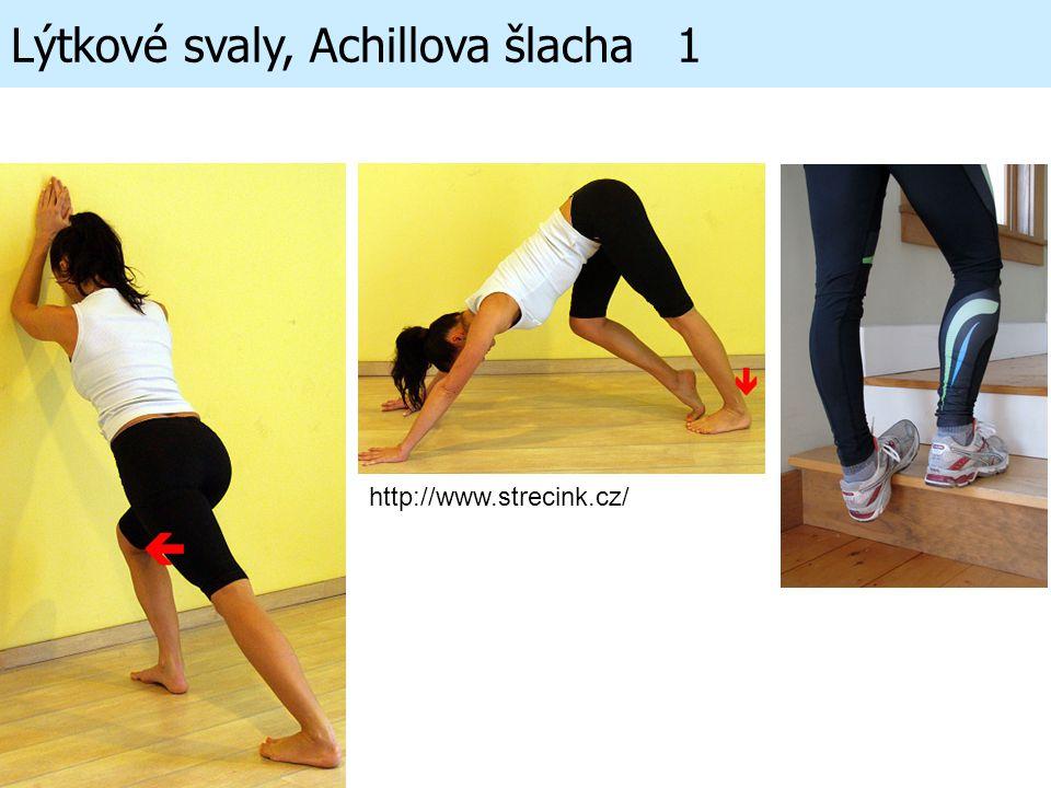 Lýtkové svaly, Achillova šlacha 1 http://www.strecink.cz/