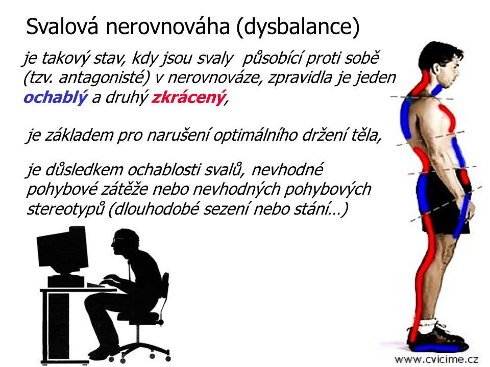 Svalová nerovnováha (dysbalance) je důsledkem ochablosti svalů, nevhodné pohybové zátěže nebo nevhodných pohybových stereotypů (dlouhodobé sezení nebo
