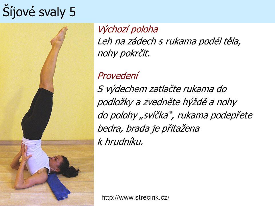 Šíjové svaly 5 Výchozí poloha Leh na zádech s rukama podél těla, nohy pokrčit. Provedení S výdechem zatlačte rukama do podložky a zvedněte hýždě a noh