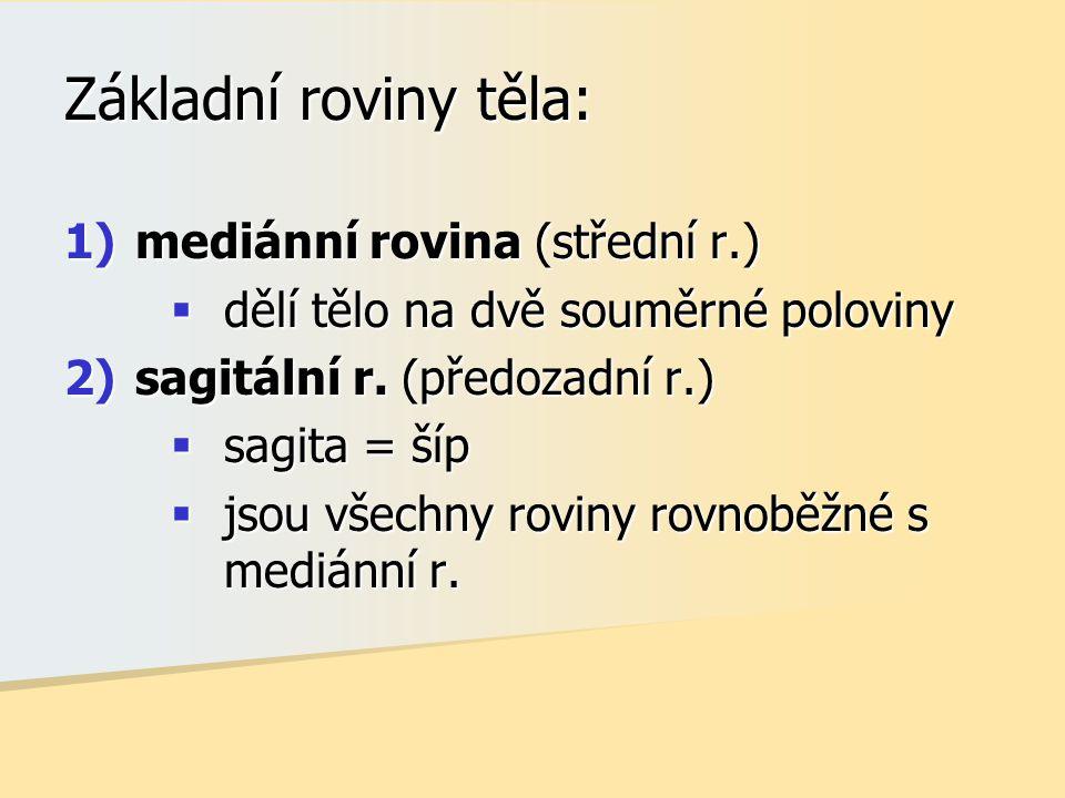 Základní roviny těla: 1)mediánní rovina (střední r.)  dělí tělo na dvě souměrné poloviny 2)sagitální r. (předozadní r.)  sagita = šíp  jsou všechny