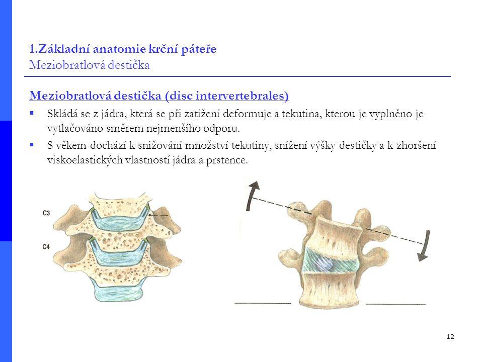 12 1.Základní anatomie krční páteře Meziobratlová destička Meziobratlová destička (disc intervertebrales)  Skládá se z jádra, která se při zatížení deformuje a tekutina, kterou je vyplněno je vytlačováno směrem nejmenšího odporu.